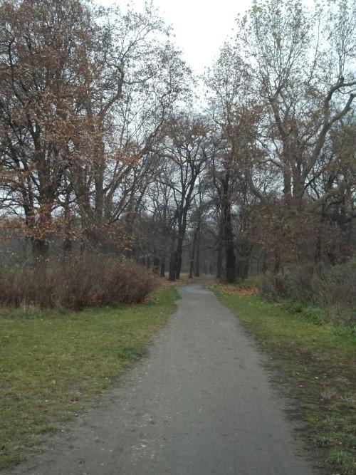 Volkspark Schönholzer