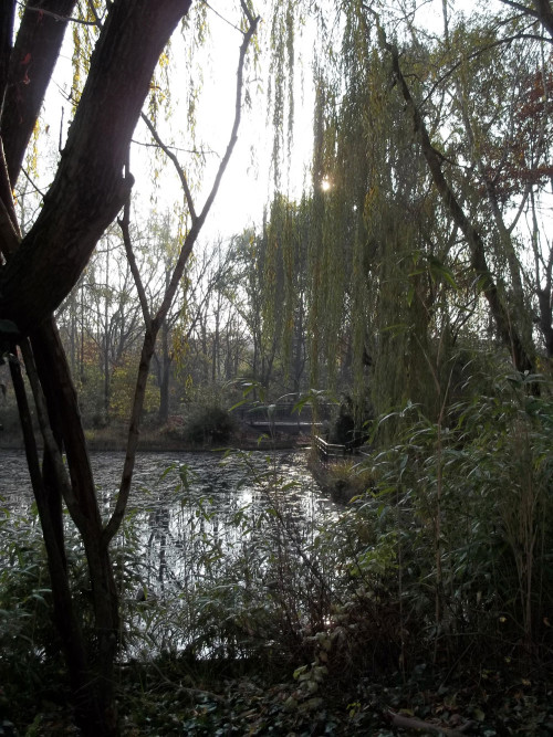 Ernst-Thälmann-Park